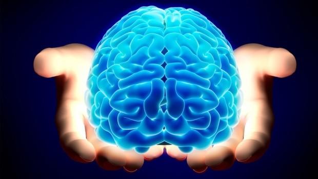 Организован проект по регенерации мертвого мозга