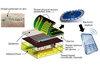 Разработан новый шовный материал, сообщающий о начале развития сепсиса