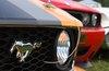 Локализация двигателя Ford на российском заводе составила 78%