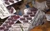 Свалку дорогих лекарств нашли под Сергиевым Посадом