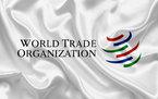 О проблемах ВТО