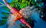 Экзотические конкуренты знакомых овощей