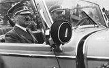 Британцы нашли в трудах Гитлера противоядие от политкорректности