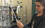 Сибирские ученые установили причину цирроза печени