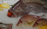 Цены на российскую рыбу можно было бы легко снизить