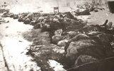 Забытый «подвиг» финнов в тылу Красной Армии