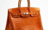 Джейн Биркин попросила убрать свое имя с крокодиловой сумки Hermès