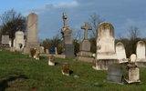 Минздрав сообщил о снижении смертности трудоспособного населения России