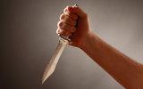 Следствие рассматривает две версии поножовщины в школе в Перми