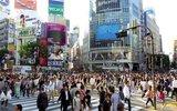 Япония   планирует  ввести  электронные  визы