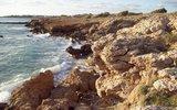 На Кипре российские туристы сорвались со скалы в море