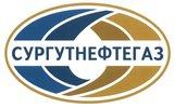 В Сургуте разлилась нефть на площади 8,6 тыс. кв. метров