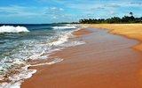 Российские туроператоры начали закрывать продажи путевок на Шри-Ланку