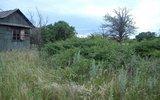 В Минэкономразвития предложили изымать земли за мусор и нескошенную траву