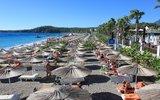 Почти 90 россиян погибли в Турции с начала туристического сезона