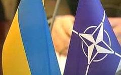 «Пятидневная война» лишила Украину шансов попасть в НАТО