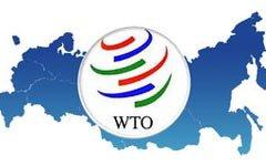 Саакашвили не спас Россию от ВТО. Спасет ли Янукович?