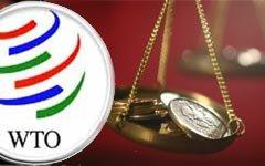 Вступление в ВТО еще аукнется российской экономике