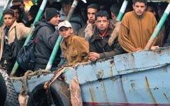 Соотечественников – выжить. Мигрантов – завезти