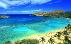 Гавайи. Фото с сайта tury.ru