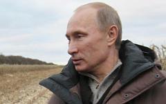 Владимир Путин © РИА Новости, Екатерина Штукина