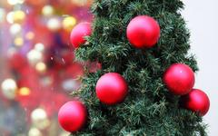 Новогодняя елка © KM.RU, Алексей Белкин