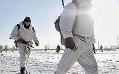 Минобороны взялось за формирование арктических бригад