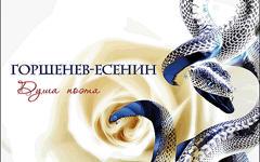 Горшенев-Есенин «Душа поэта», фото с сайта nwcod.com