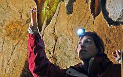Исследователь собирает образцы в Тито Бустильо. Фото с сайта newsvine.com