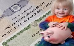 Материнский капитал. Коллаж © KM.RU