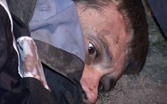 Сергей Помазун в момент задержания. Фото с сайта 31.mvd.ru