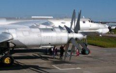 Ту-95. Фото с сайта walkarounds.airforce.ru