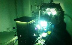 Симулятор солнечного света. Фото с сайта mitei.mit.edu