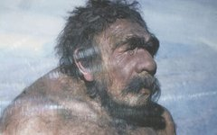 Неандерталец из Мустье, анатом Сольгер, 1910 год. Фото с сайта wikimedia.org