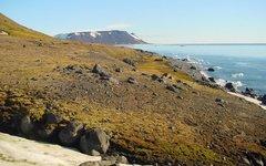 Архипелаг Земля Франца-Иосифа. Фото Wofratz с сайта wikimedia.org