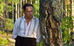 Игорь Скляр в сериале «Семейный альбом». Фото с сайта kino-teatr.ru