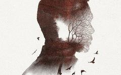 Фрагмент оформления альбома «Андрей»