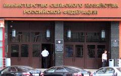 Вход в здание Минсельхоза © KM.RU, Илья Шабардин