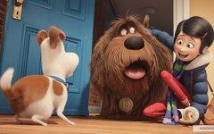 Кадр из фильма «Тайная жизнь домашних животных». Фото с сайта kinopoisk.ru