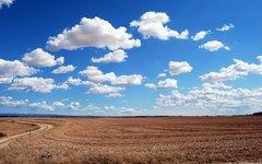 «Либералы» озаботились запустением России и готовы объявить распродажу земли