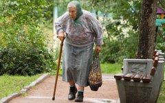 Пенсионерка © KM.RU, Илья Шабардин