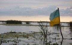 Флаг Украины в болоте
