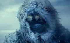 Кинопремьера «Амундсен»: белое безмолвие – и ничего человеческого