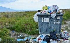 Половина россиян отказывается оплачивать «мусорную ре