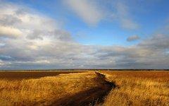 Отток гастарбайтеров оставит Россию без урожая?