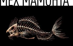 Мех Мамонта «Глупый сиг»