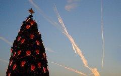 Рождественская елка. Фото с сайта wikipedia.org