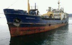 Сухогруз «Амурская». Фото с сайта maritime.port.bg
