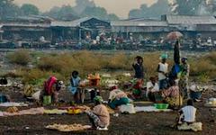 Гвинейские трущобы. Фото Сергея Можарова с сайта picasaweb.google.ru