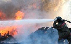 Тушение пожара. Фото с официального сайта МЧС РФ